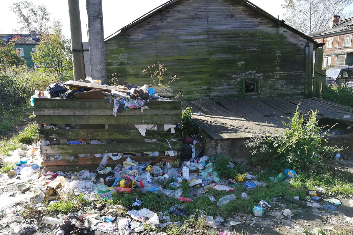 Остров-сердце икрысо-псы: как жители Кегострова протестуют против установки мусорной печи